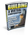 Thumbnail BUILDING A VIRTUAL CORPORATION Looking Big Time on a Small T